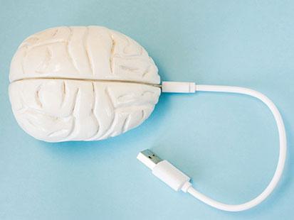 na zdjęciu jest plastikowy mózg, do którego podpiety jest kabel USB
