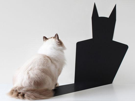 na zdjęciu jest kot patrzący się na swój cień, który jest w kształcie Batmana