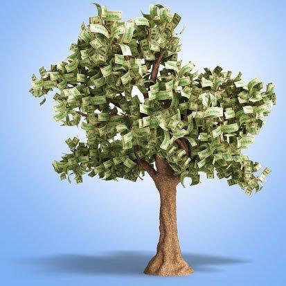 na zdjęciu jest drezwa, które zamiast liści ma dolary